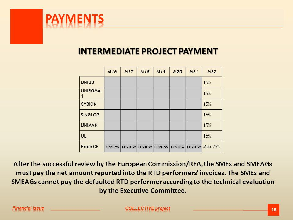 15 INTERMEDIATE PROJECT PAYMENT INTERMEDIATE PROJECT PAYMENT M16M17M18M19M20M21M22 UNIUD15% UNIROMA 1 15% CYBION15% SINGLOG15% UNIMAN15% UL15% From CEreview Max 25% After the successful review by the European Commission/REA, the SMEs and SMEAGs must pay the net amount reported into the RTD performers' invoices.