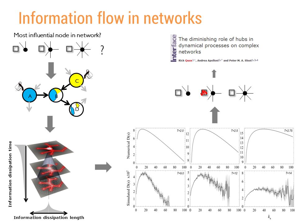 Information flow in networks AB C D Information dissipation length Information dissipation time Most influential node in network? ?