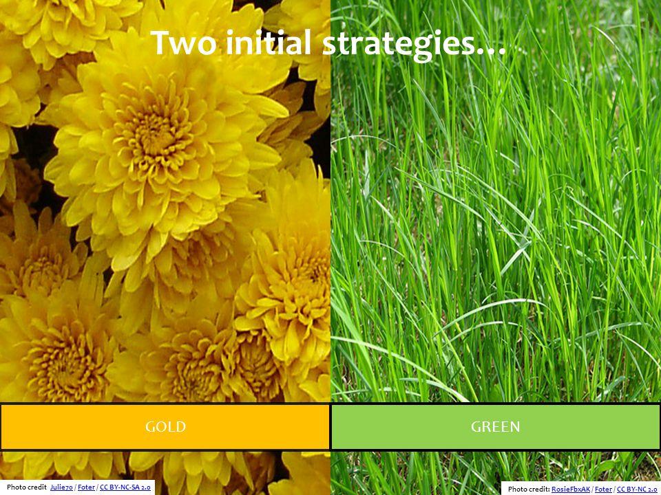 6 Two initial strategies… GOLDGREEN Photo credit: Julie70 / Foter / CC BY-NC-SA 2.0Julie70FoterCC BY-NC-SA 2.0 Photo credit: RosieFbxAK / Foter / CC B