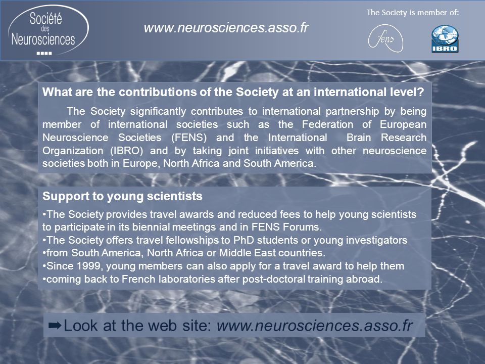 The Society is member of: www.neurosciences.asso.fr Support to young scientists The Society provides travel awards and reduced fees to help young scientists to participate in its biennial meetings and in FENS Forums.