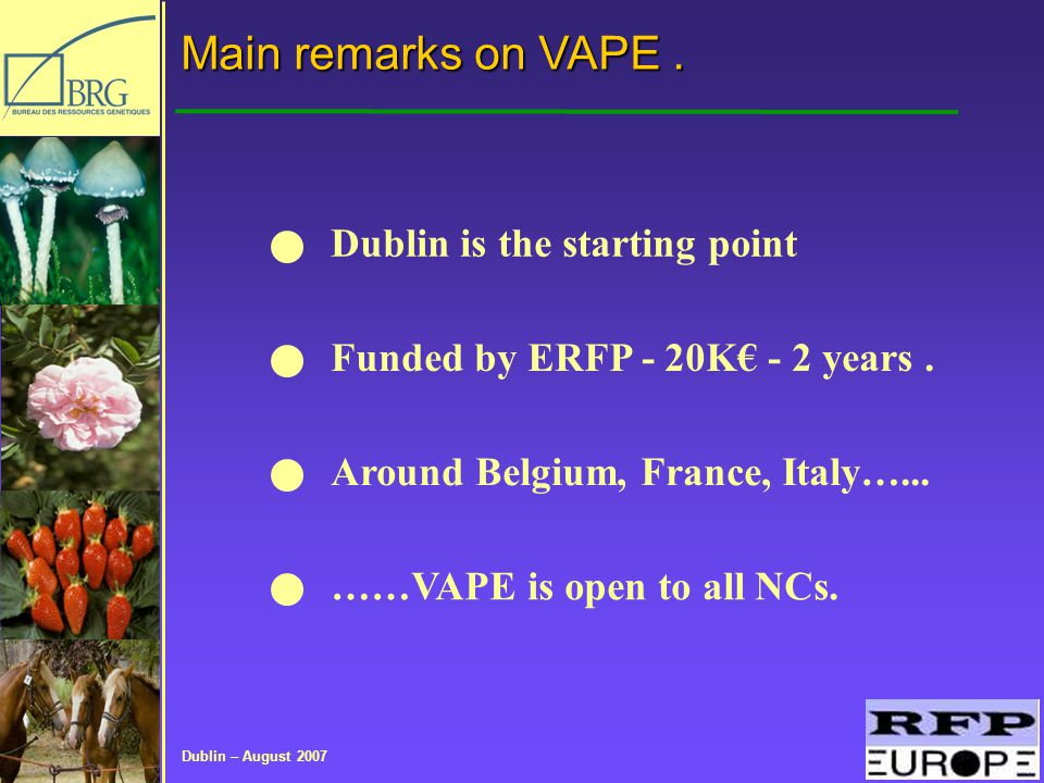Dublin – August 2007 Main remarks on VAPE.