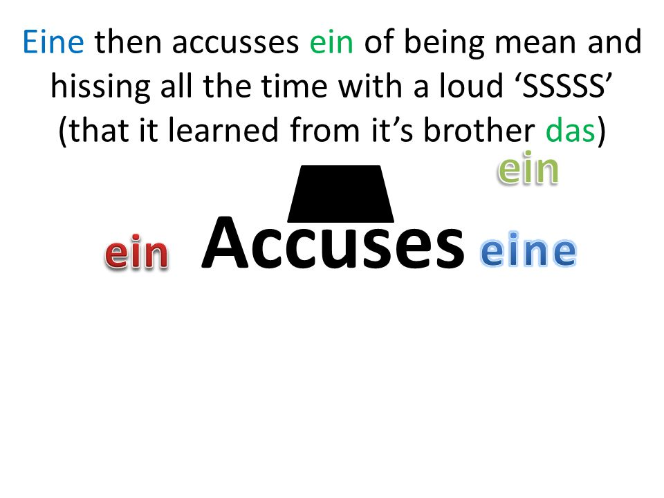 Accuses Eine then accusses ein of being mean and hissing all the time with a loud 'SSSSS' (that it learned from it's brother das)