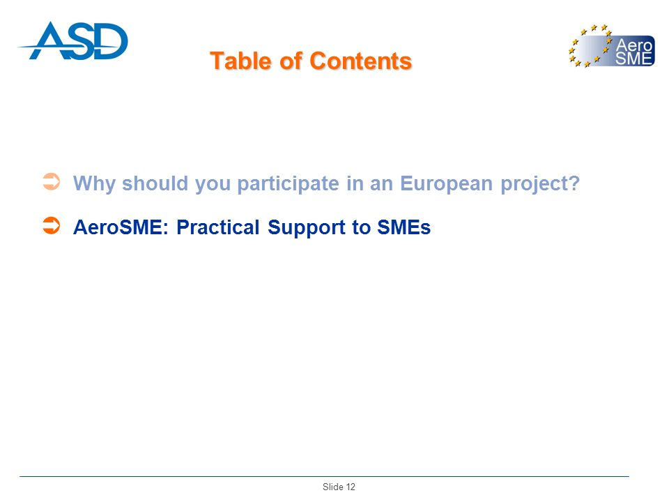 Slide 12 Table of Contents  Why should you participate in an European project.
