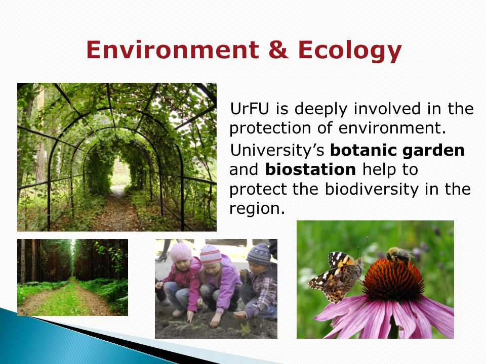 UrFU is deeply involved in the protection of environment. University's botanic garden and biostation help to protect the biodiversity in the region.