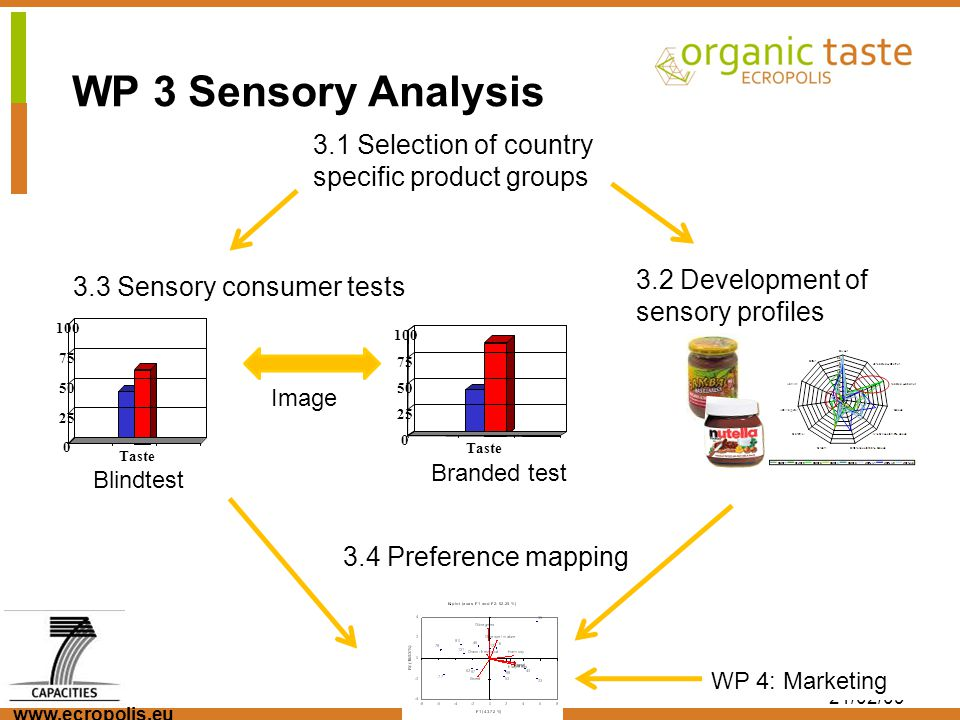 www.ecropolis.eu 21/02/09 3.1 Selection of country specific product groups 3.2 Development of sensory profiles 3.3 Sensory consumer tests 3.4 Preferen