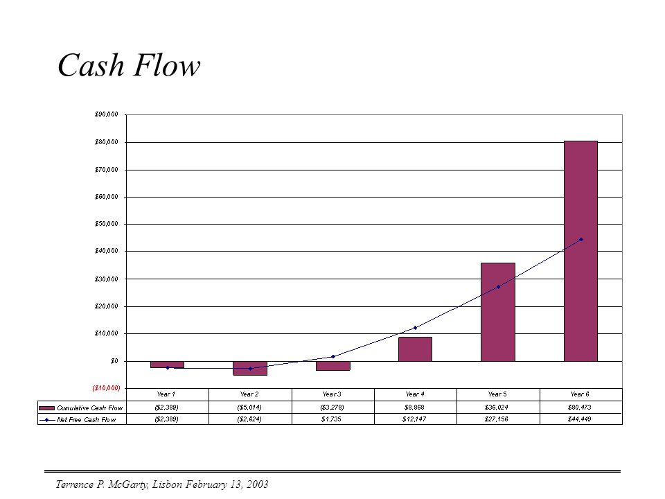 Terrence P. McGarty, Lisbon February 13, 2003 Cash Flow