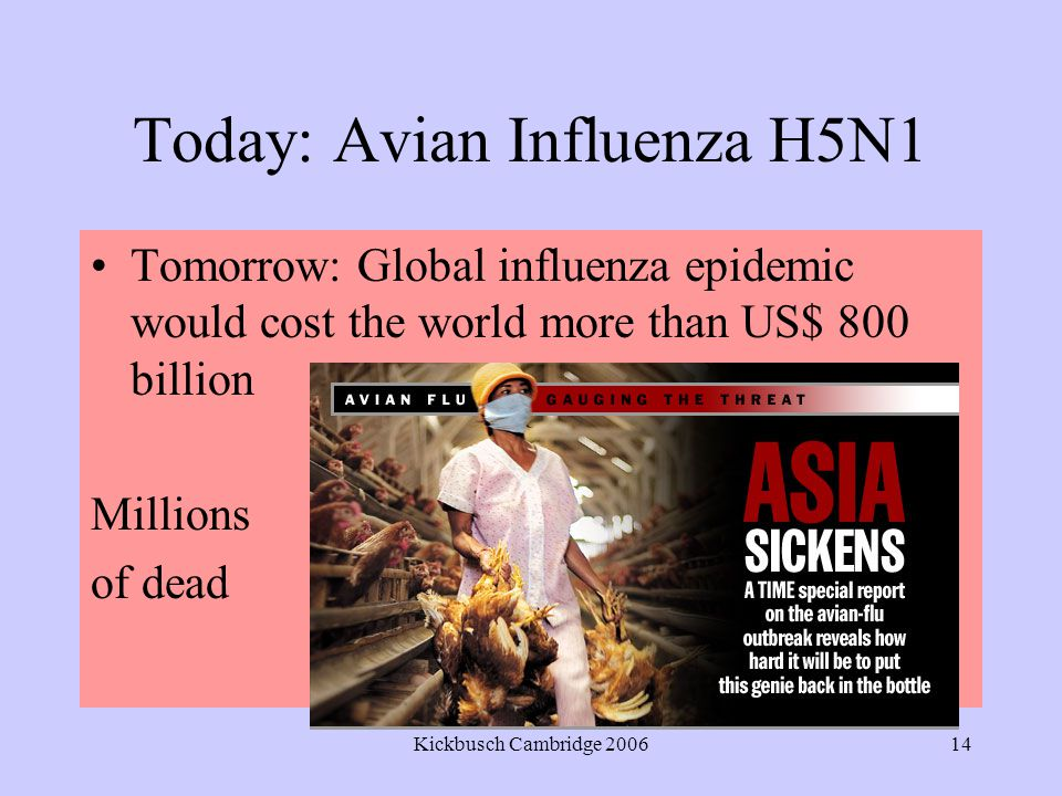 Kickbusch Cambridge 200614 Today: Avian Influenza H5N1 Tomorrow: Global influenza epidemic would cost the world more than US$ 800 billion Millions of dead