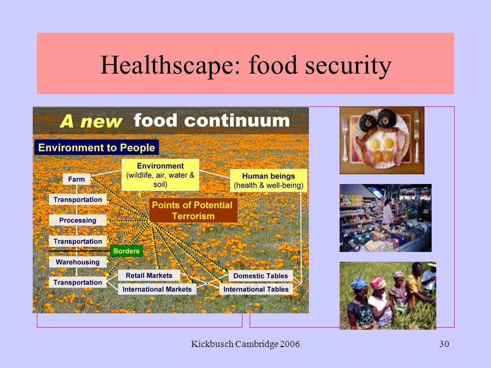 Kickbusch Cambridge 200630 Healthscape: food security