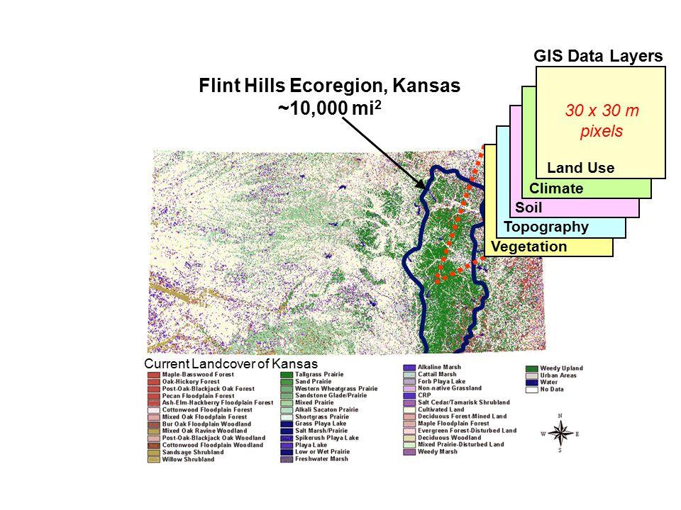 Flint Hills Ecoregion, Kansas ~10,000 mi 2 Current Landcover of Kansas Topography Vegetation Soil Climate GIS Data Layers Land Use 30 x 30 m pixels