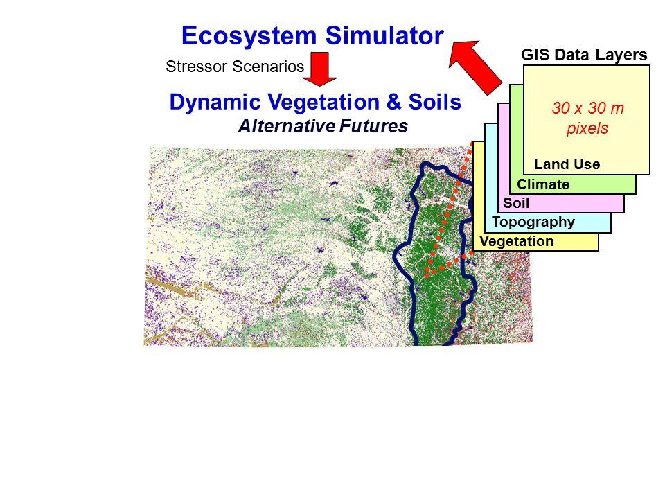 Ecosystem Simulator Dynamic Vegetation & Soils Alternative Futures Topography Vegetation Soil Climate GIS Data Layers Land Use 30 x 30 m pixels Curren