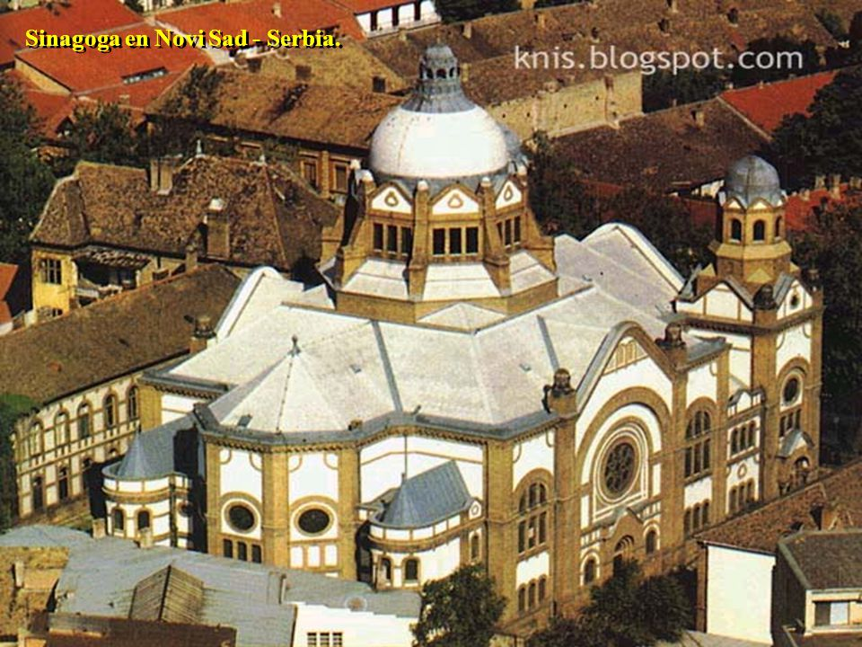 Shill en Novi Sad - Serbia.