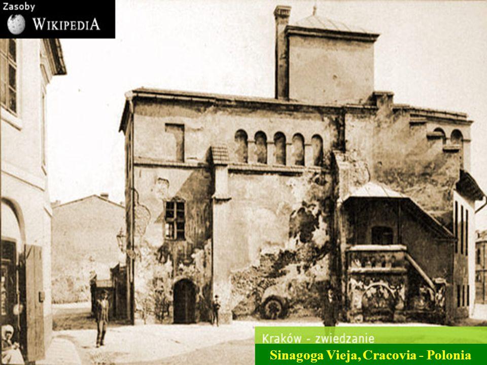 Sinagoga Mayor, Roma -Italia