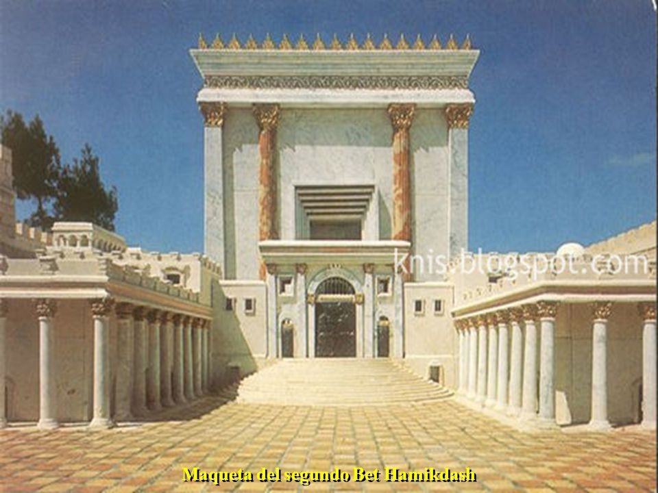 Sinagoga de Tel Aviv