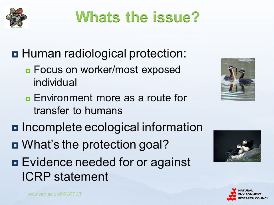  Human radiological protection:  Focus on worker/most exposed individual  Environment more as a route for transfer to humans  Incomplete ecological information  What's the protection goal.