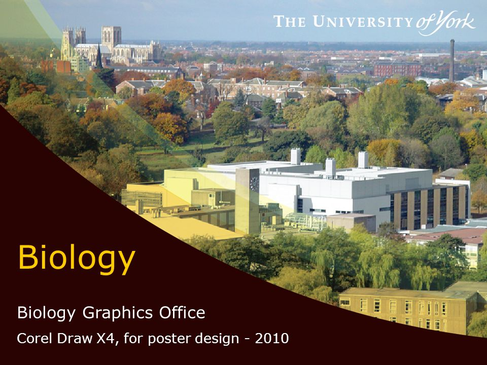 Biology Biology Graphics Office Corel Draw X4, for poster design - 2010