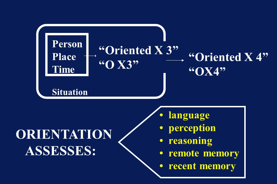 "Person Place Time Situation ""Oriented X 3"" ""O X3"" ""Oriented X 4"" ""OX4"" ORIENTATION ASSESSES: language perception reasoning remote memory recent memory"