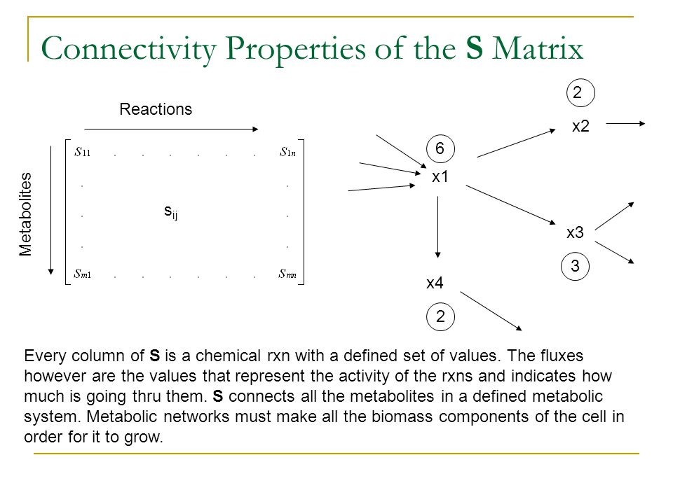 Connectivity Properties of the S Matrix Reactions Metabolites s ij x1 x2 x3 x4 6 2 3 2 Every column of S is a chemical rxn with a defined set of values.