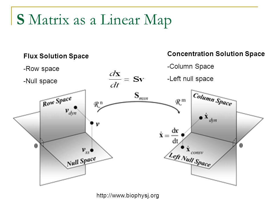 S Matrix as a Linear Map http://www.biophysj.org Flux Solution Space -Row space -Null space Concentration Solution Space -Column Space -Left null space