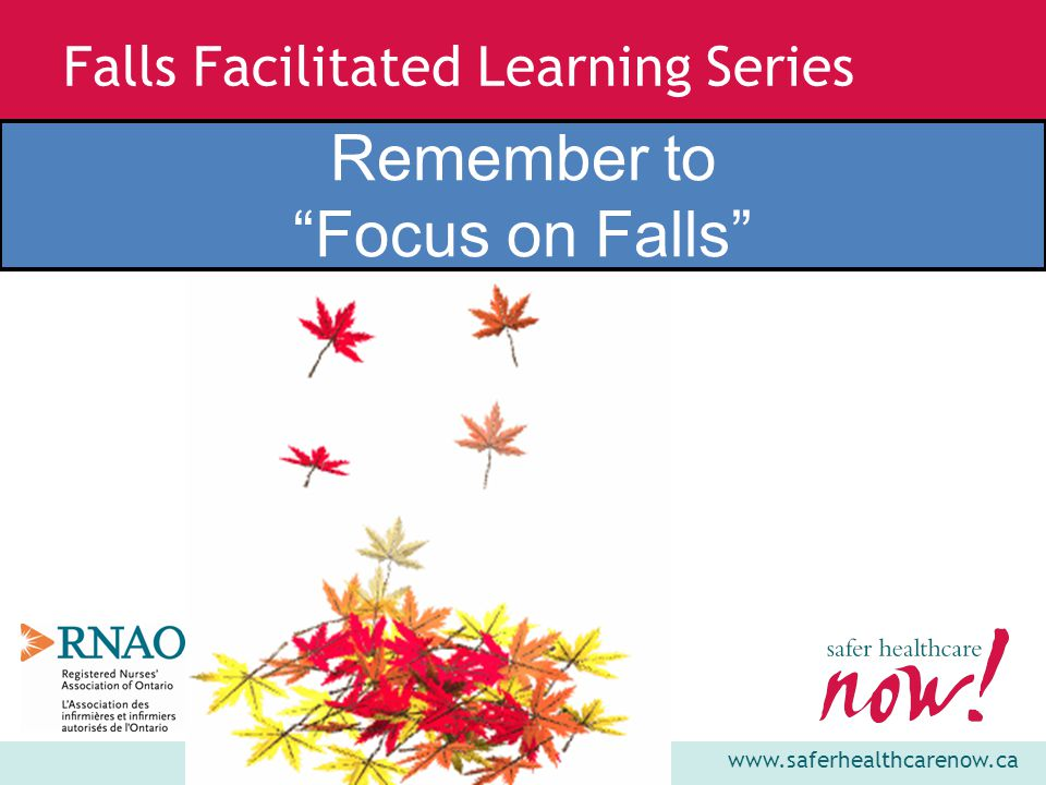 www.saferhealthcarenow.ca Falls Facilitated Learning Series Remember to Focus on Falls