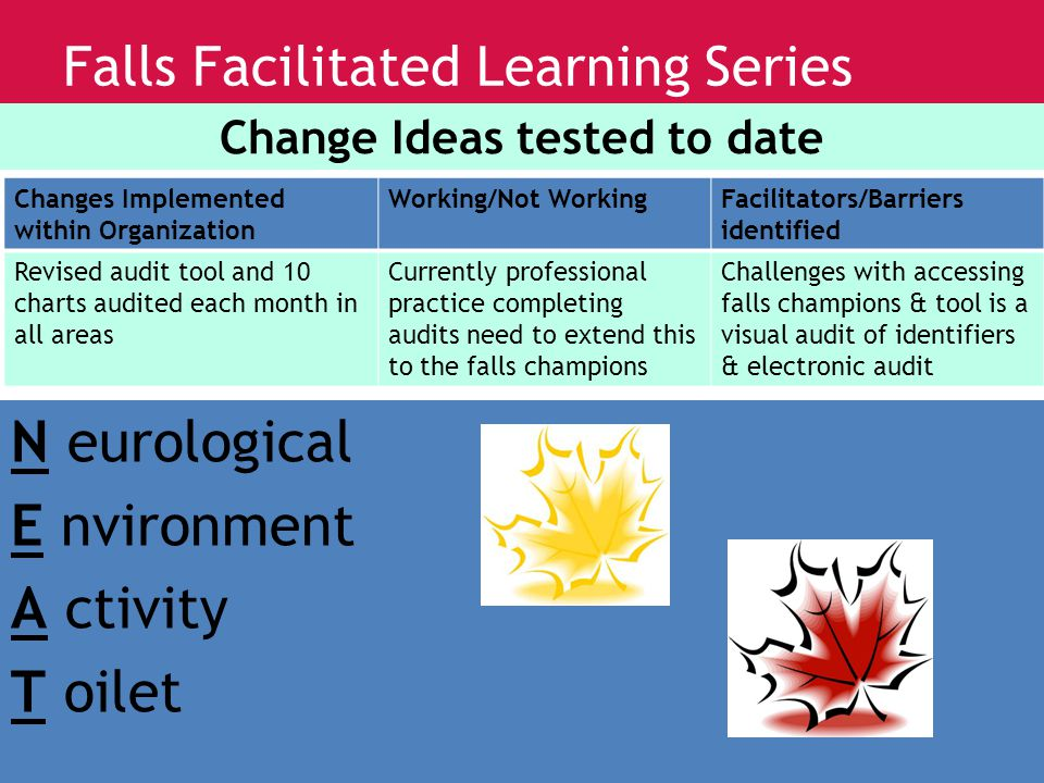www.saferhealthcarenow.ca Falls Facilitated Learning Series Change Ideas tested to date Changes Implemented within Organization Working/Not WorkingFacilitators/Barriers identified Revised audit tool and 10 charts audited each month in all areas Currently professional practice completing audits need to extend this to the falls champions Challenges with accessing falls champions & tool is a visual audit of identifiers & electronic audit N eurological E nvironment A ctivity T oilet