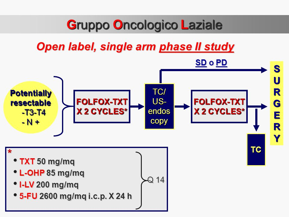 Open label, single arm phase II study Potentiallyresectable -T3-T4 -T3-T4 - N + FOLFOX-TXT X 2 CYCLES* FOLFOX-TXT SURGERY SD o PD SD o PD TC TXT 50 mg/mq TXT 50 mg/mq L-OHP 85 mg/mq L-OHP 85 mg/mq I-LV 200 mg/mq I-LV 200 mg/mq 5-FU 2600 mg/mq i.c.p.