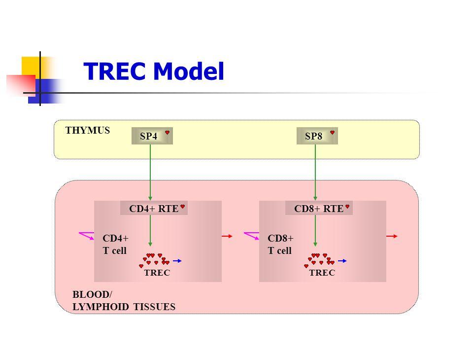TREC Model THYMUS SP4 CD4+ RTE CD4+ T cell TREC SP8 CD8+ RTE CD8+ T cell TREC BLOOD/ LYMPHOID TISSUES