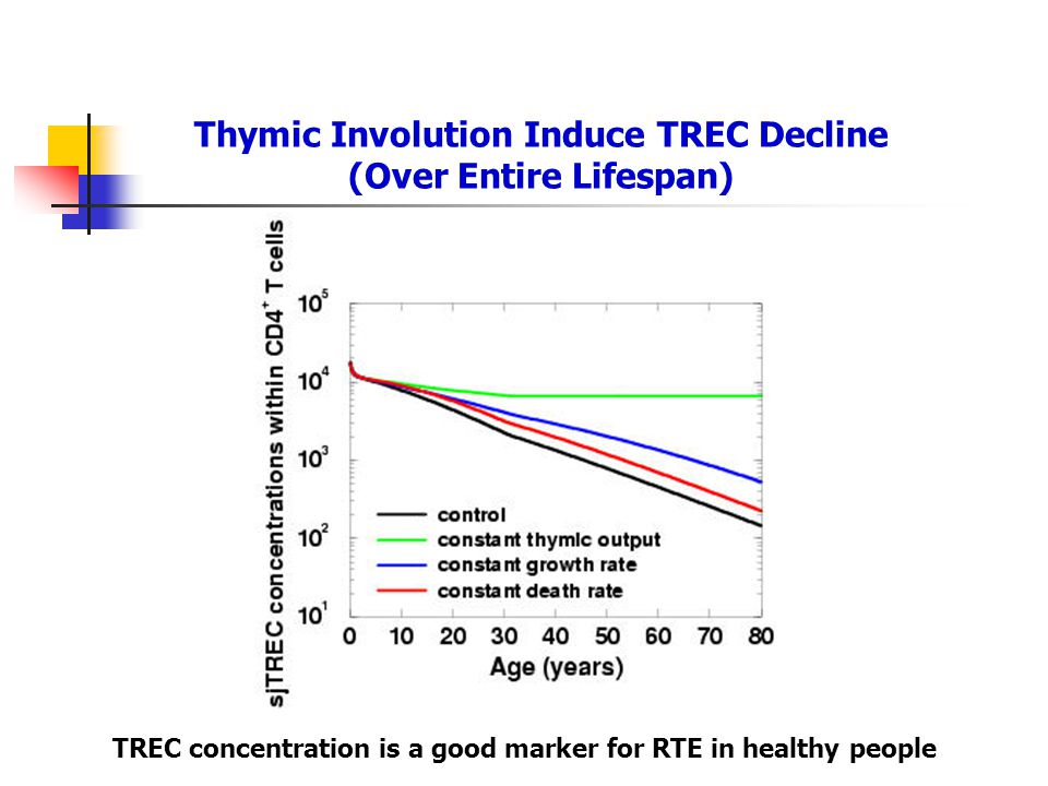 Thymic Involution Induce TREC Decline (Over Entire Lifespan) TREC concentration is a good marker for RTE in healthy people