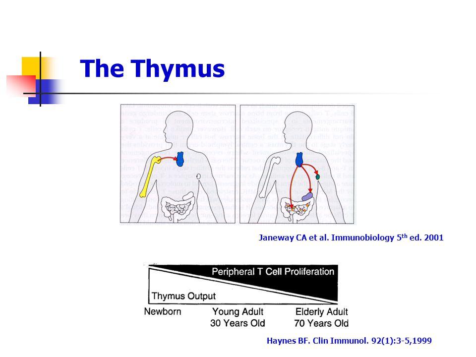 The Thymus Janeway CA et al. Immunobiology 5 th ed. 2001 Haynes BF. Clin Immunol. 92(1):3-5,1999