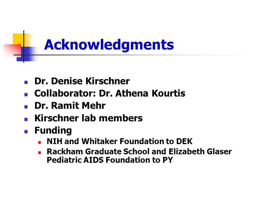 Acknowledgments Dr.Denise Kirschner Collaborator: Dr.