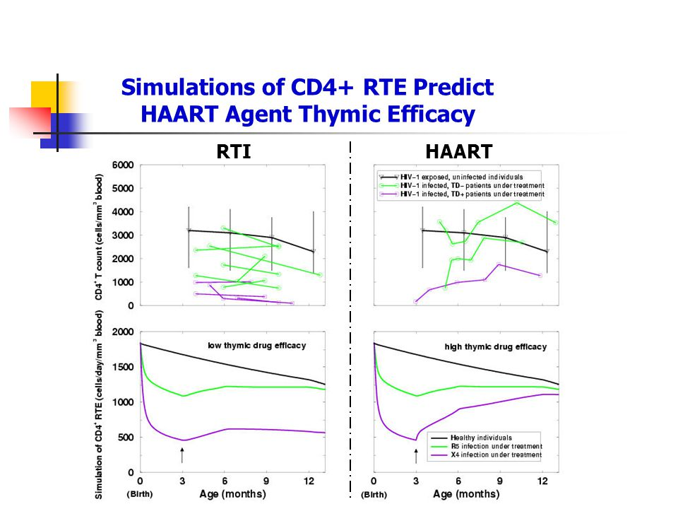 Simulations of CD4+ RTE Predict HAART Agent Thymic Efficacy RTIHAART