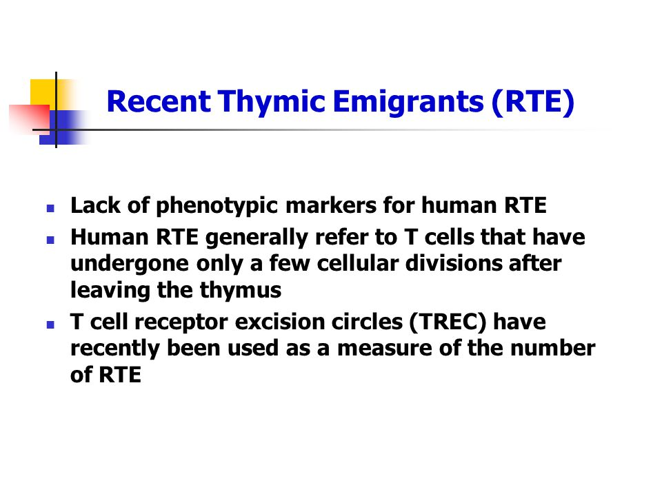 Recent Thymic Emigrants (RTE) Lack of phenotypic markers for human RTE Human RTE generally refer to T cells that have undergone only a few cellular di