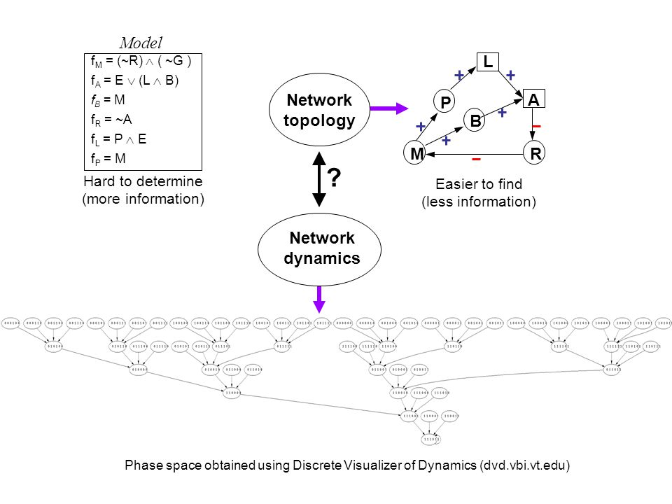 f M = (~R)  ( ~G ) f A = E  (L  B) f B = M f R = ~A f L = P  E f P = M MR P B A L Hard to determine (more information) Easier to find (less information) Network topology Network dynamics .