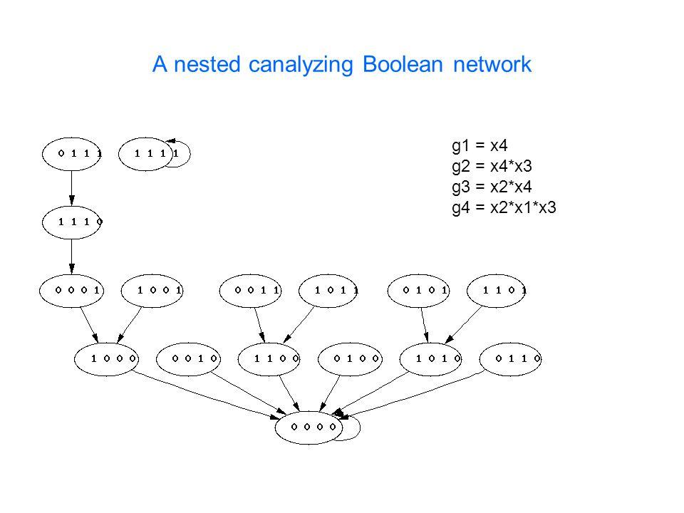 A nested canalyzing Boolean network g1 = x4 g2 = x4*x3 g3 = x2*x4 g4 = x2*x1*x3
