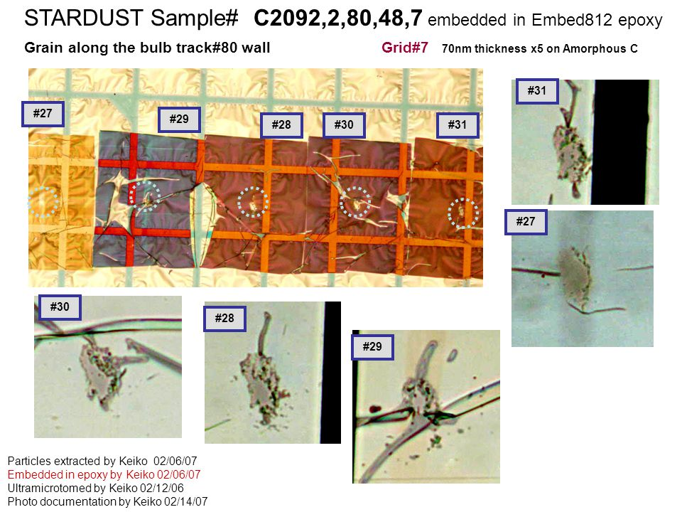 STARDUST Sample# C2126,2,68,2,1 embedded in cyanoacrylete STARDUST Sample# C2092,2,80,48,7 embedded in Embed812 epoxy Grain along the bulb track#80 wall Grid#7 70nm thickness x5 on Amorphous C Particles extracted by Keiko 02/06/07 Embedded in epoxy by Keiko 02/06/07 Ultramicrotomed by Keiko 02/12/06 Photo documentation by Keiko 02/14/07 #28 #27 #29 #30#31 #27 #29 #30 #28 #31