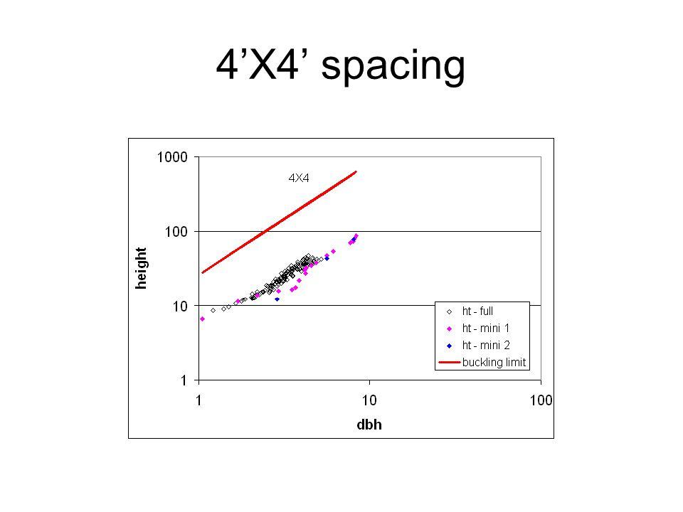 4'X4' spacing
