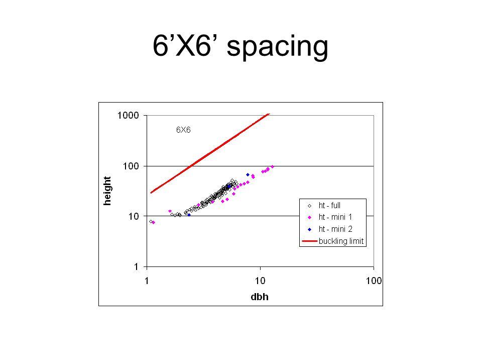 6'X6' spacing