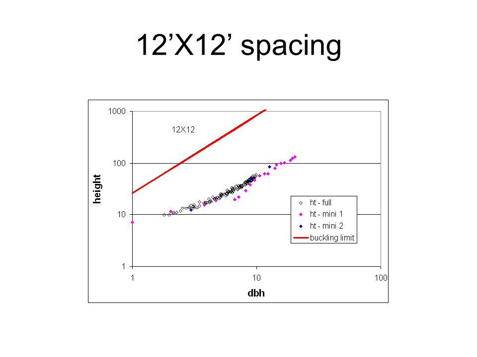 12'X12' spacing