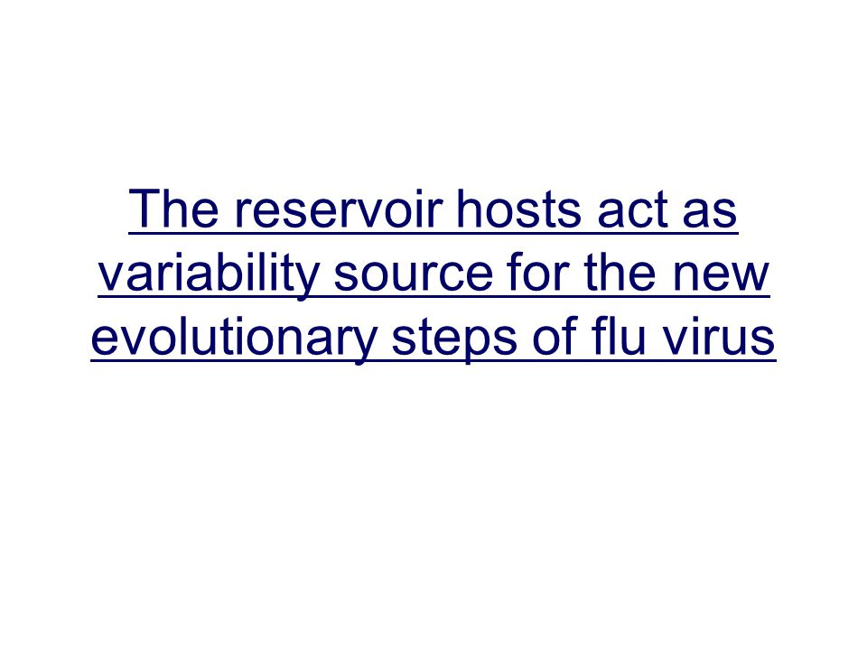 The reservoir hosts act as variability source for the new evolutionary steps of flu virus