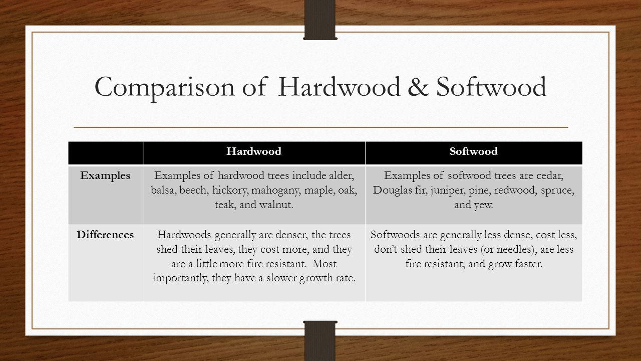 Comparison of Hardwood & Softwood HardwoodSoftwood ExamplesExamples of hardwood trees include alder, balsa, beech, hickory, mahogany, maple, oak, teak, and walnut.