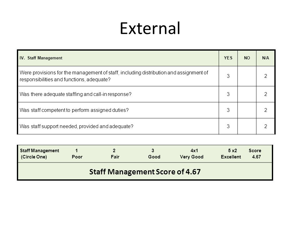 External IV. Staff ManagementYESNON/A Were provisions for the management of staff, including distribution and assignment of responsibilities and funct