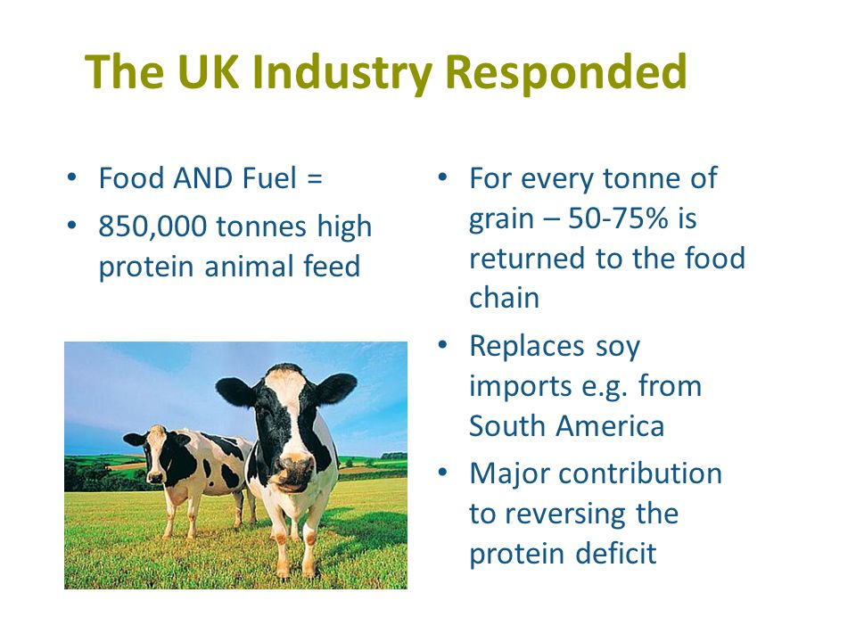The UK Industry Responded Food AND Fuel = 850,000 tonnes high protein animal feed For every tonne of grain – 50-75% is returned to the food chain Replaces soy imports e.g.