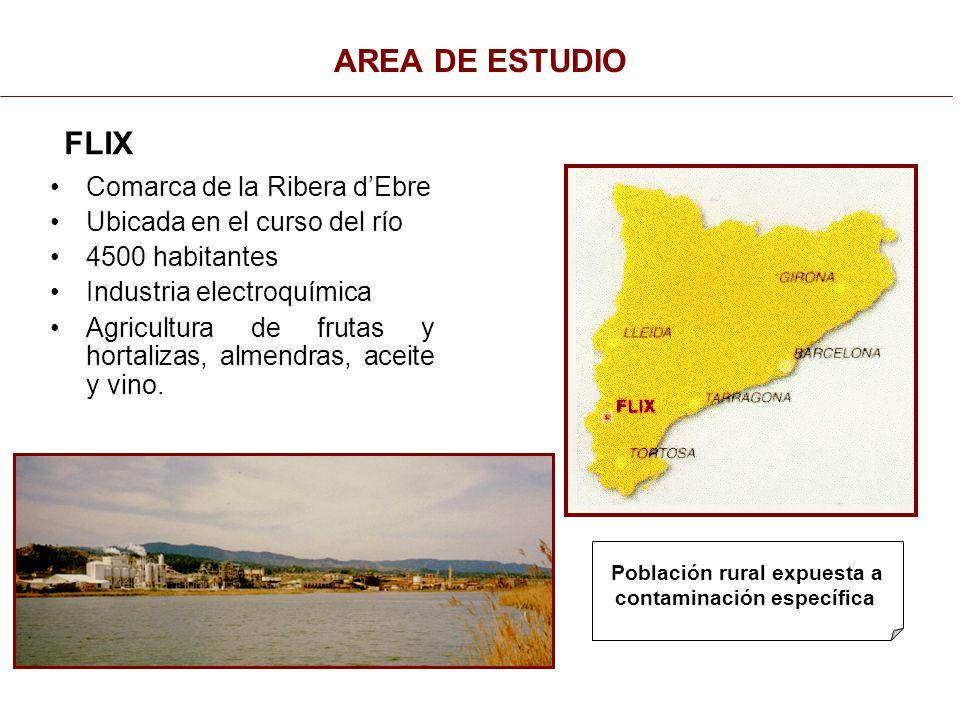 AREA DE ESTUDIO Comarca de la Ribera d'Ebre Ubicada en el curso del río 4500 habitantes Industria electroquímica Agricultura de frutas y hortalizas, almendras, aceite y vino.