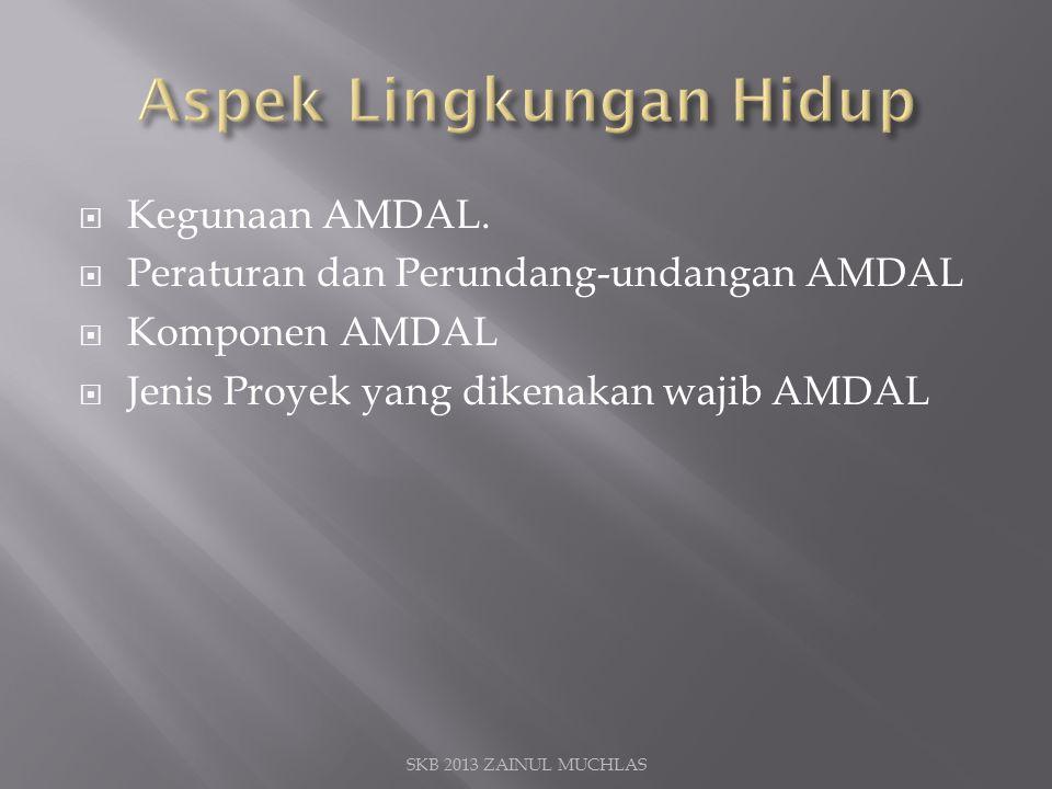 Kegunaan AMDAL.  Peraturan dan Perundang-undangan AMDAL  Komponen AMDAL  Jenis Proyek yang dikenakan wajib AMDAL SKB 2013 ZAINUL MUCHLAS