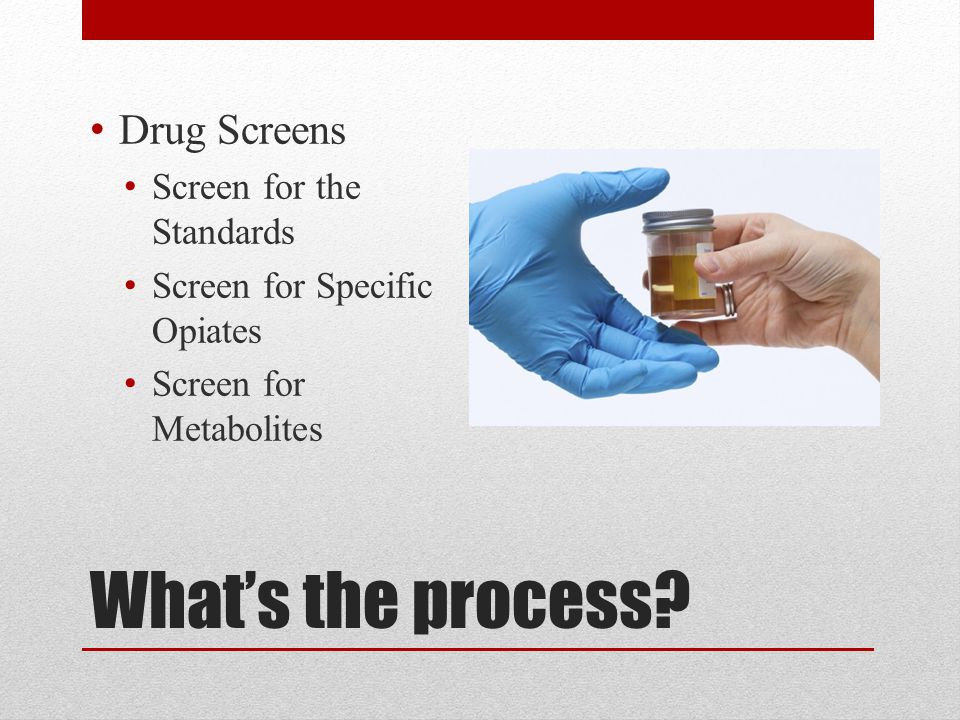 What's the process? Drug Screens Screen for the Standards Screen for Specific Opiates Screen for Metabolites