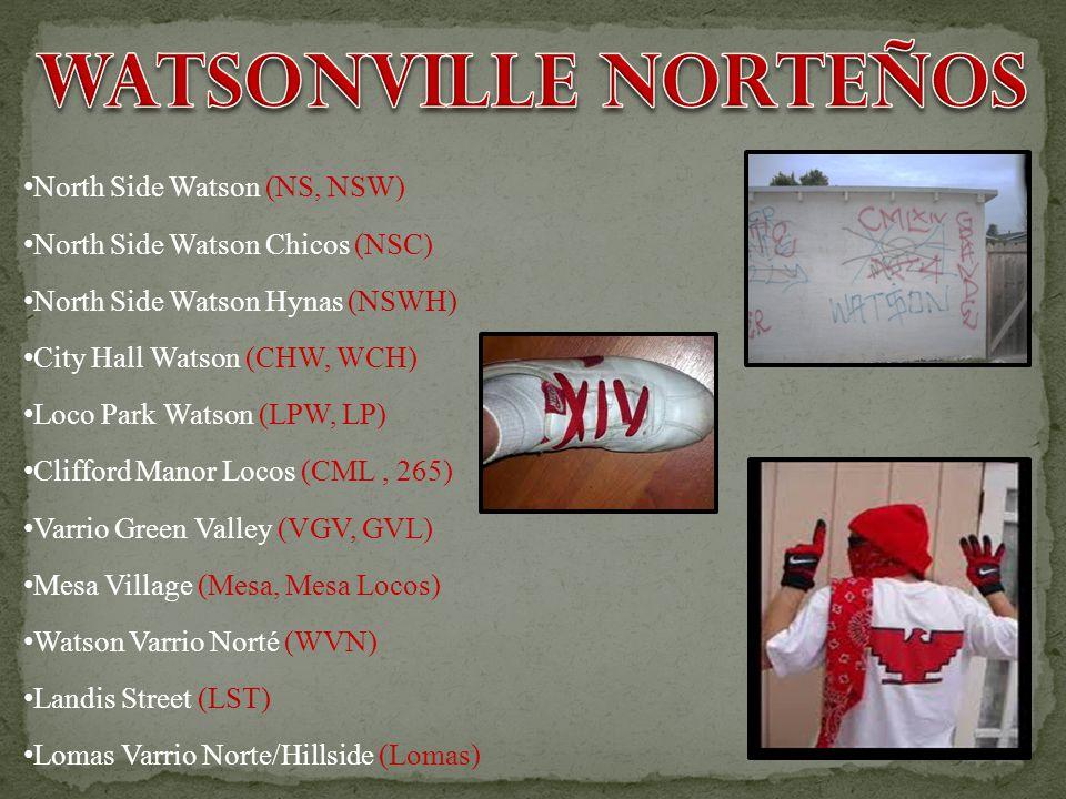 North Side Watson (NS, NSW) North Side Watson Chicos (NSC) North Side Watson Hynas (NSWH) City Hall Watson (CHW, WCH) Loco Park Watson (LPW, LP) Cliff