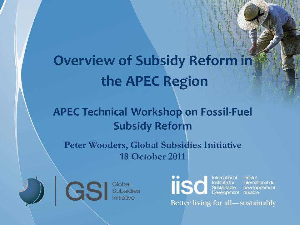 Overview of Subsidy Reform in the APEC Region APEC Technical Workshop on Fossil-Fuel Subsidy Reform Peter Wooders, Global Subsidies Initiative 18 Octo