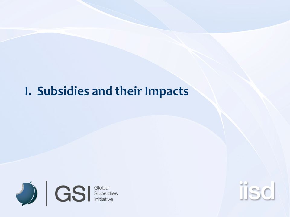I. Subsidies and their Impacts