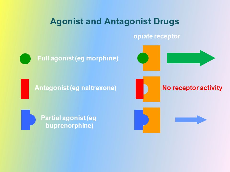 Agonist and Antagonist Drugs opiate receptor Full agonist (eg morphine) Partial agonist (eg buprenorphine) No receptor activityAntagonist (eg naltrexo