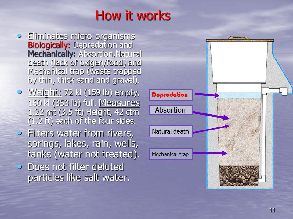 11 How it works How it works Eliminates micro organisms Biologically: Depredation and Mechanically: Absortion,Natural death (lack of oxigen/food) and Mechanical trap (waste trapped by thin, thick sand and gravel).