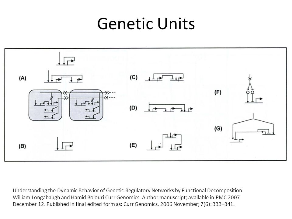 Genetic Units Understanding the Dynamic Behavior of Genetic Regulatory Networks by Functional Decomposition.